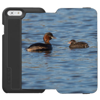 Little Grebe and Chick Incipio Watson™ iPhone 6 Wallet Case