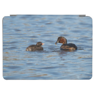 Little Grebe and Chick iPad Air Cover