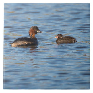 Little Grebe and Chick Large Square Tile