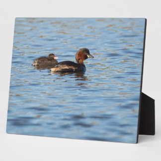 Little Grebe and Chick Plaque