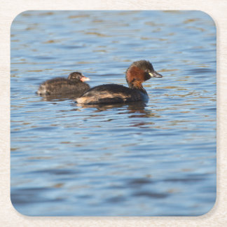 Little Grebe and Chick Square Paper Coaster