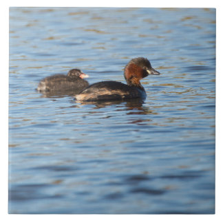 Little Grebe and Chick Tile