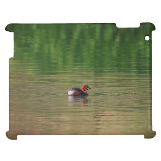 Little grebe duck in breeding plumage iPad case