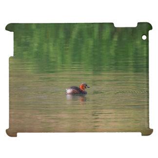 Little grebe duck in breeding plumage iPad case