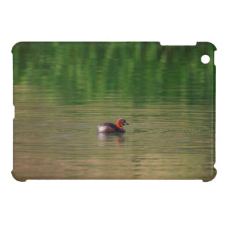 Little grebe duck in breeding plumage iPad mini cases