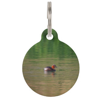 Little grebe duck in breeding plumage pet ID tag