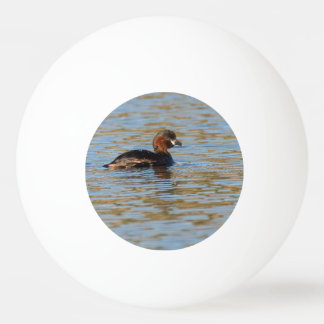 Little Grebe Ping Pong Ball