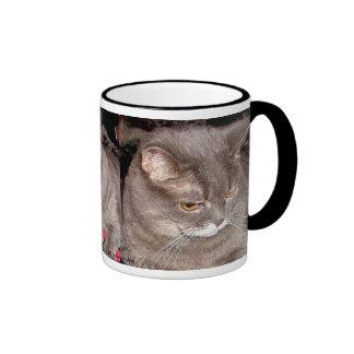 LITTLE GREY CAT MUGS