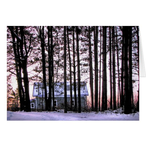 Little house in the woods greeting card