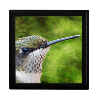 Little Hummer Large Square Gift Box