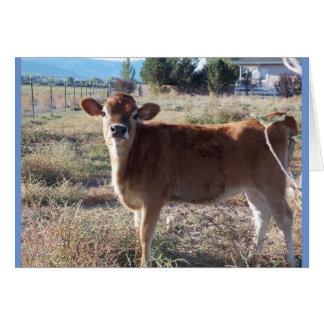 Little Jersey Cow Greeting Card
