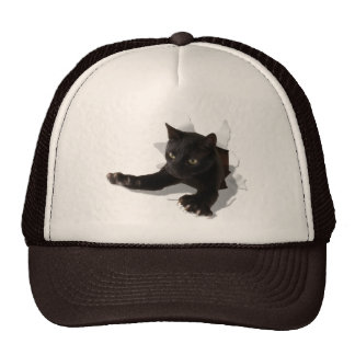little jumping panther2 cap