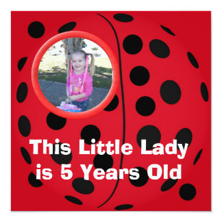 Little Lady Ladybug Birthday Party Invitations