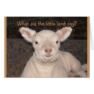 Little Lamb Birthday Card