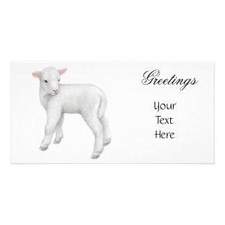 Little Lamb Photo Card