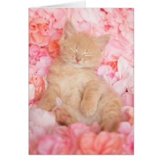 Little Linus Pink Floral Blank Notecard