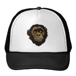 LITTLE MONKEY. HATS