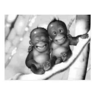 Little Monkeys Postcard