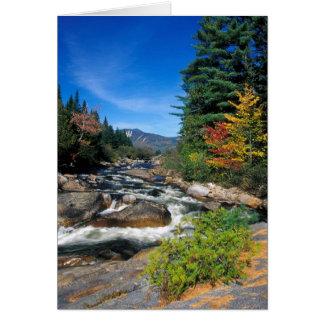 Little Niagra Falls, Appalachian Trail, Maine Card