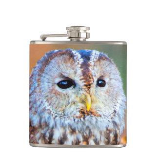 Little Owl Hip Flask
