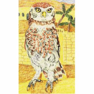 Little Owl Photo Cut Outs