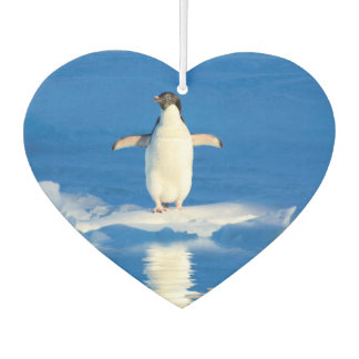 Little Penguin Car Air Freshener