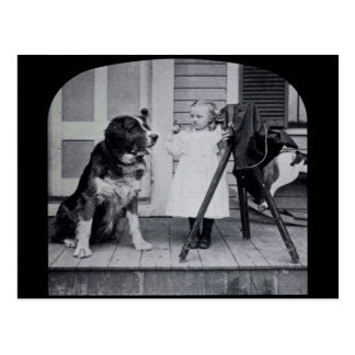 Little Photographer and Her St. Bernard Vintage Postcard