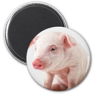 Little Pig 6 Cm Round Magnet