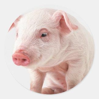 Little Pig Round Sticker