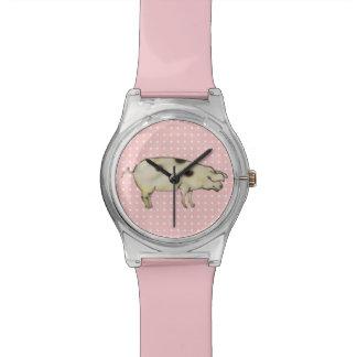 little pig watch