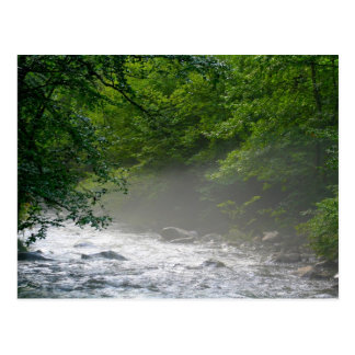 Little Pigeon River - Greenbrier- Great Smoky Mtns Postcard