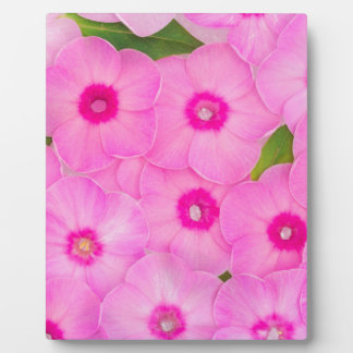 little pink flowers plaque