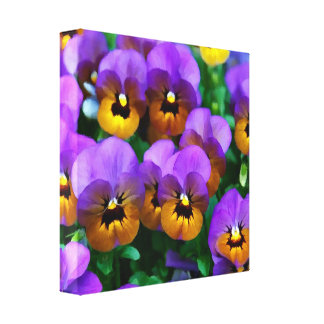 Little Purple Pansies Trimmed in Yellow Gold Stretched Canvas Prints