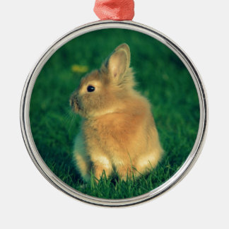 Little rabbit christmas tree ornaments