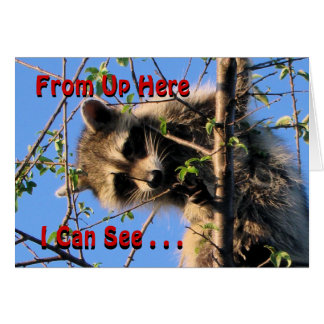 Little Racoon Any Occassion card-customize Greeting Card