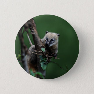 Little rascals coati - lemur 6 cm round badge