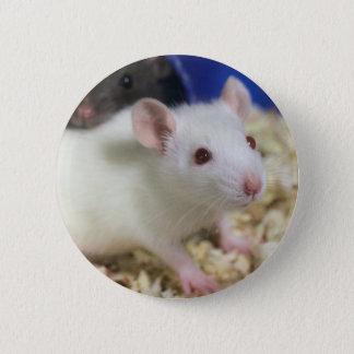 Little rat 6 cm round badge