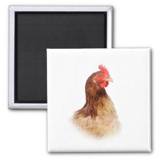 Little Red Hen Magnet