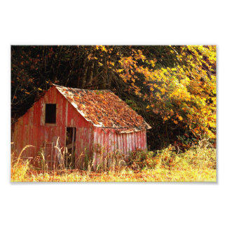 Little Red Shed. Art Photo