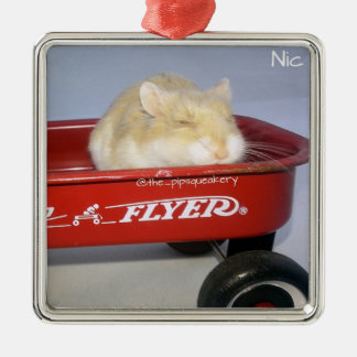 Little Red Wagon! Christmas Tree Ornament