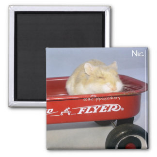 Little Red Wagon! Magnets