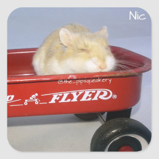 Little Red Wagon! Square Sticker