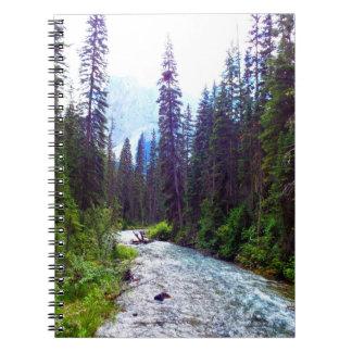 Little River Notebook