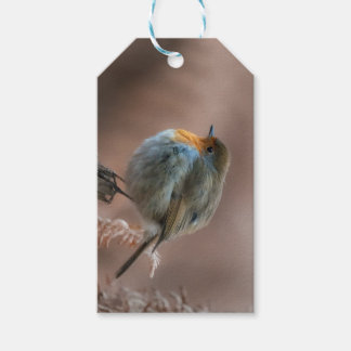 little robin gift tags