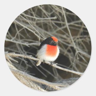 little robin redbreast bird sitting on a twig round sticker