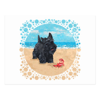 Little Scottie Finds a Crab at the Beach Postcard