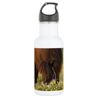Little Sharni Shetland Pony 532 Ml Water Bottle