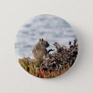 Little squirrel 6 cm round badge