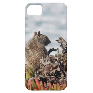 Little squirrel barely there iPhone 5 case