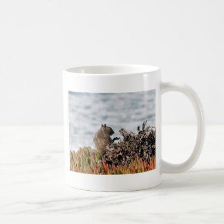 Little squirrel coffee mug